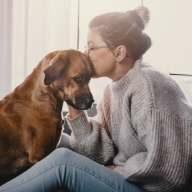 Optimaler Schutz für Fellnasen? Entdecken Sie unsere Hundeversicherungen.