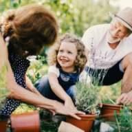 Aus zarten Pflänzchen werden im Alter kräftige Pflanzen - und bei der Riester Rente sieht dies genauso aus.