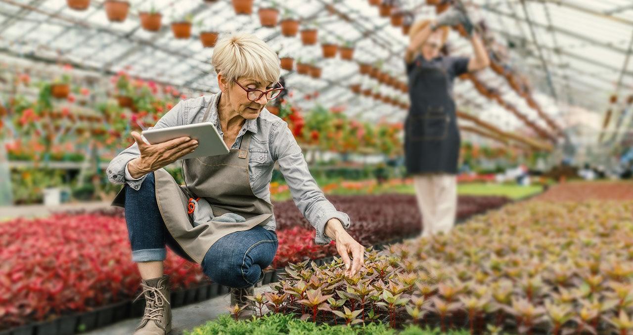 Rente in Deutschland Infos zur gesetzlichen Rentenversicherung